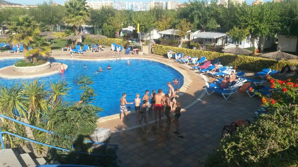 poussins-barcelone-piscine